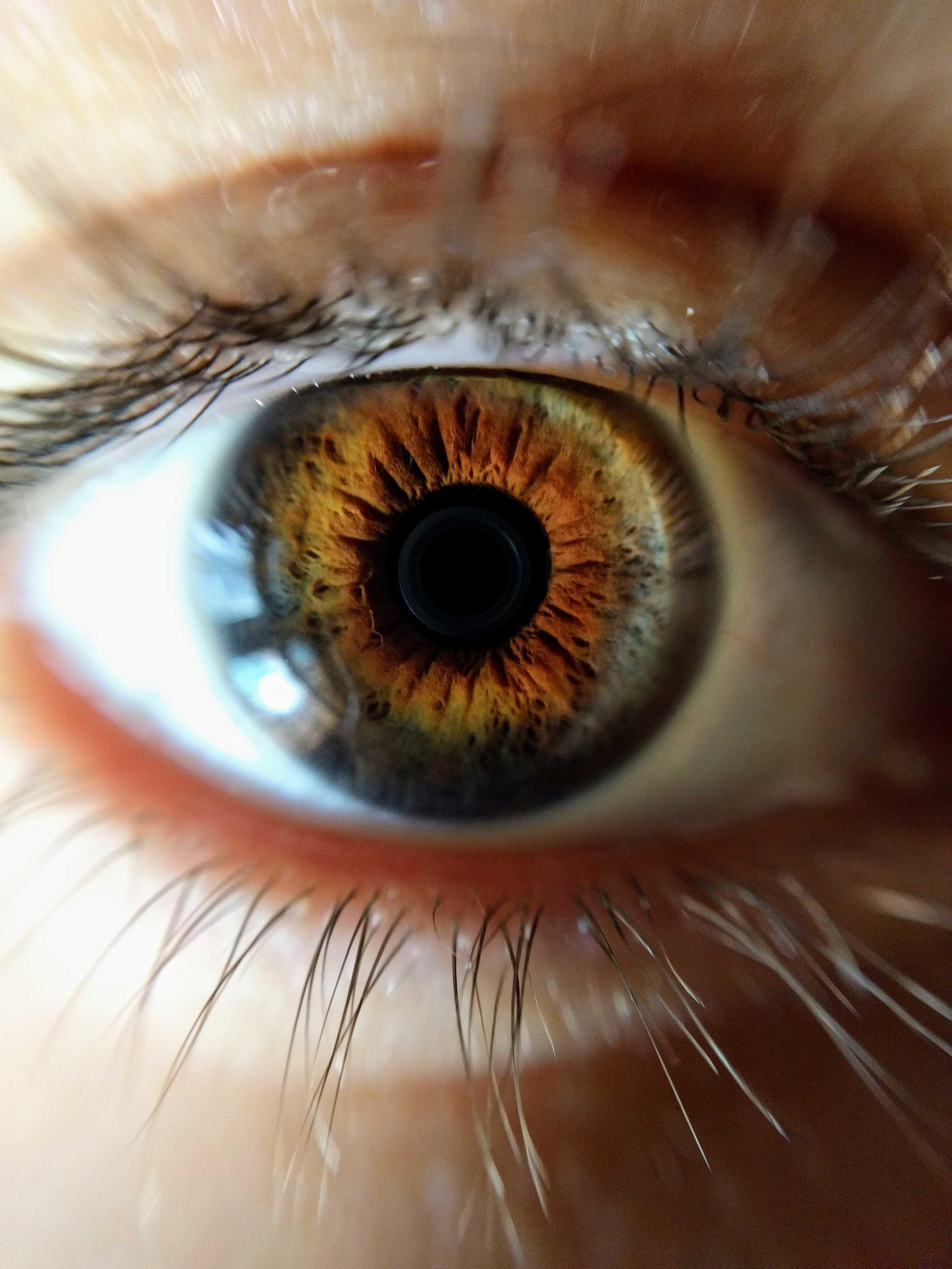 Single Eye Vision